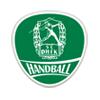 SC DHfK Leipzig e.V. Handball